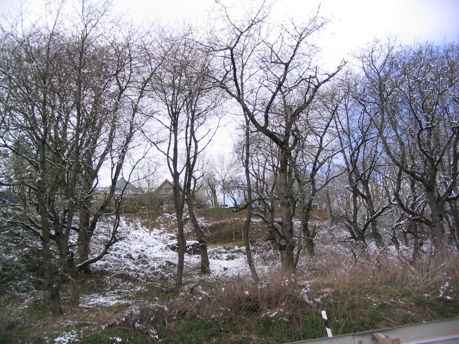 Ostern_2008_44